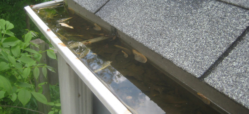 How To Clean & Inspect Your Gutters